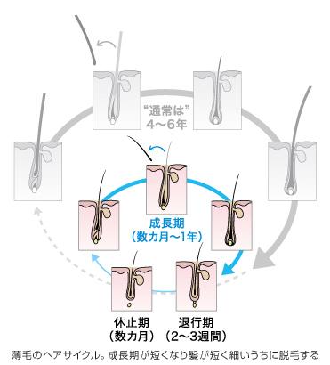 ヘアサイクル.jpg